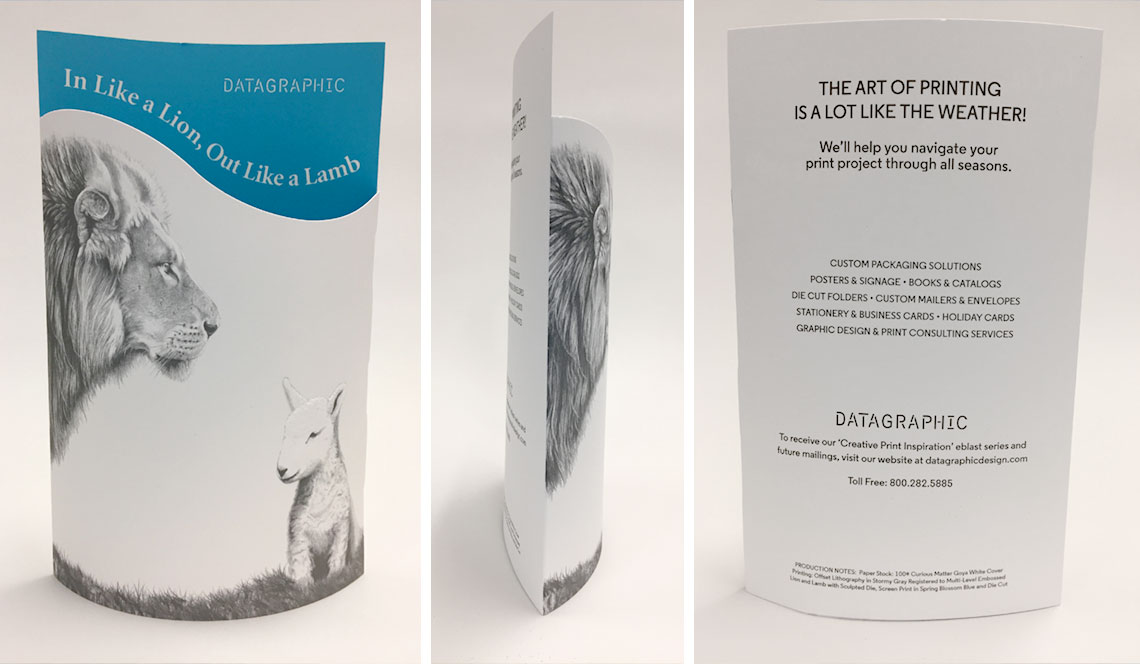 DataGraphic Lion and Lamb Direct Mailer